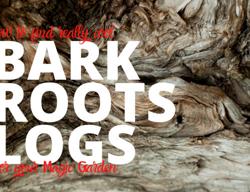 Find Bark Roots Logs for Garden