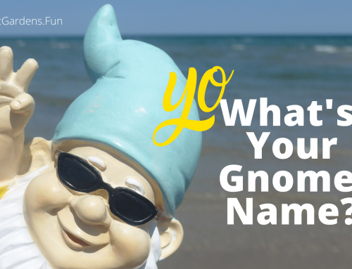 What's Your Gnome Name?