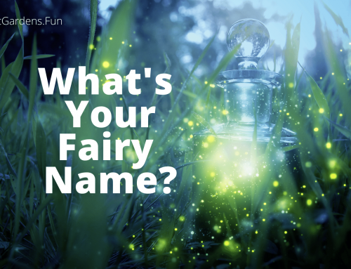What's Your Fairy Name?