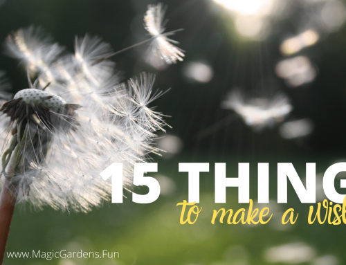 15 Things to Make A Wish On From Your Magic Garden
